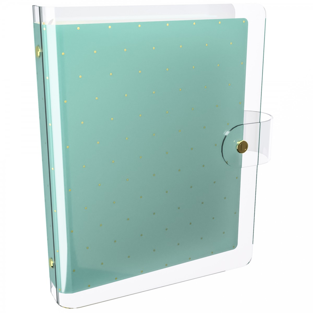 DISCAGENDA CLARITY CLEAR PVC PLANNER COVER - MINT WITH GOLD POLKA DOTS, RINGBOUND, A5 SIZE